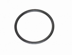 O-Ring (Dichtring) P150,EX100